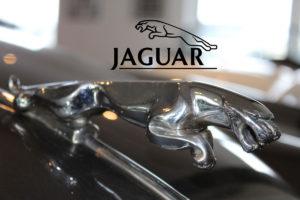 Jaguar Timeless classic auto parts